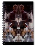 Reflections In A Pharmacy Window Spiral Notebook