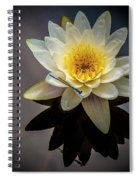 Reflections In A Pond Spiral Notebook