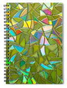 Reflections In A Window Spiral Notebook