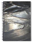 Reflections In Dark Ice 3 Spiral Notebook
