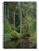 Reflections In Silver Falls State Park Spiral Notebook