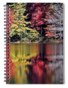 Reflections Of A Bare Grey Tree Spiral Notebook
