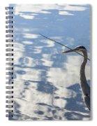 Reflections Of A Bird Spiral Notebook