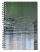 Reflections Of A Canada Goose Spiral Notebook