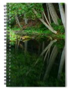 Reflections Of A Forest Spiral Notebook