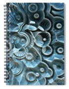 Reflections Of A Fractal Fossil Spiral Notebook