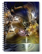 Reflections Of The Dervish Spiral Notebook