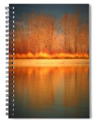 Reflections On Fire Spiral Notebook