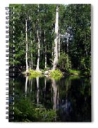 Reflections On The Ocklawaha River  Spiral Notebook