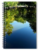 Reflections Trees Spiral Notebook