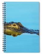 Reflective Gator Spiral Notebook