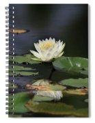 Reflective Lilly Spiral Notebook
