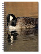 Reflective Moments Spiral Notebook