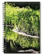 Reflective Shorelines Spiral Notebook