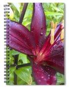 Refreshed Spiral Notebook