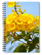 Refreshing Yellows Spiral Notebook