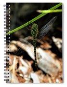Regal Darner Spiral Notebook