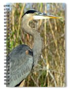 Regal Heron Spiral Notebook