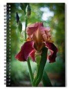 Regal Iris Spiral Notebook