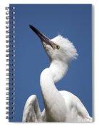 Regal Snowy Egret Spiral Notebook