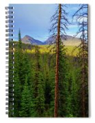 Reids Peak Spiral Notebook
