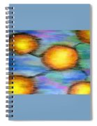 Reincarnation Spiral Notebook