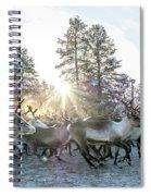 Reindeer On Autumn Sun Spiral Notebook