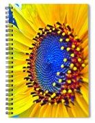 Rejoice Spiral Notebook
