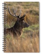Relaxing Deer Spiral Notebook