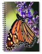Relaxing Monarch Butterfly Spiral Notebook