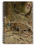 Relaxing Spiral Notebook