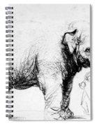 Rembrandt: Elephant, 1637 Spiral Notebook