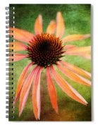 Remembering Summer Spiral Notebook