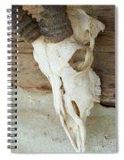Remnants Spiral Notebook