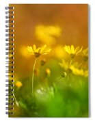 Renacemos Spiral Notebook