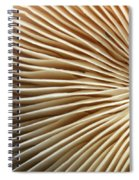 Repetishroomin Spiral Notebook