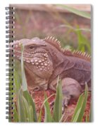 Reptile Land  Spiral Notebook