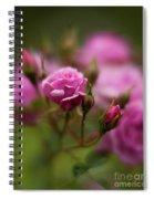 Resplendent Roses Spiral Notebook
