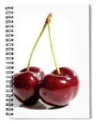 Resplendent Still Life Spiral Notebook