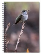 Restful Pose Spiral Notebook