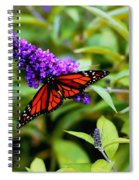 Resting Butterfly 2 Spiral Notebook