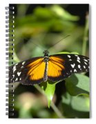 Resting Butterfly Spiral Notebook
