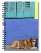 Resting In Boca Spiral Notebook