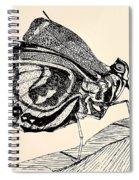Resting Monarch  Spiral Notebook