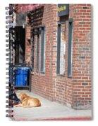 Resting On The Corner Spiral Notebook