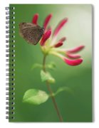 Resting On The Pink Plant Spiral Notebook