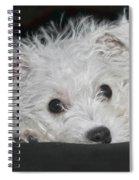 Resting Puppy Spiral Notebook
