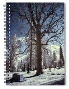 Resting Shadows Spiral Notebook