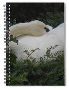Resting Swan Spiral Notebook