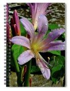 Resurrection Flower Spiral Notebook